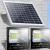 戶外人體感應一拖二太陽能分體式路燈